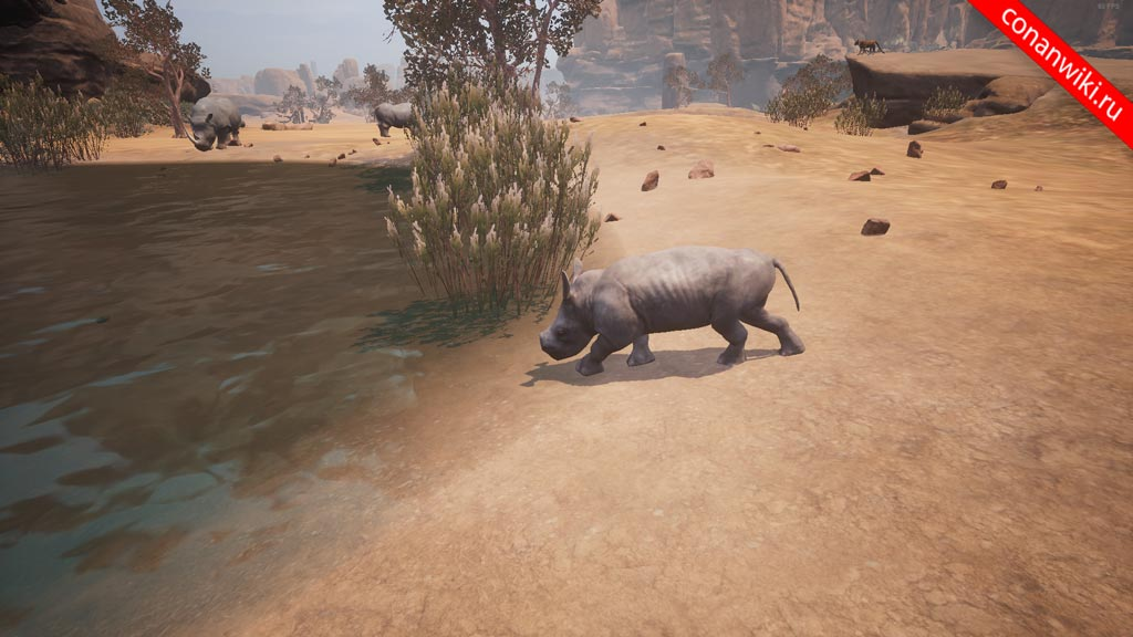 Найте-детёныша-носорога