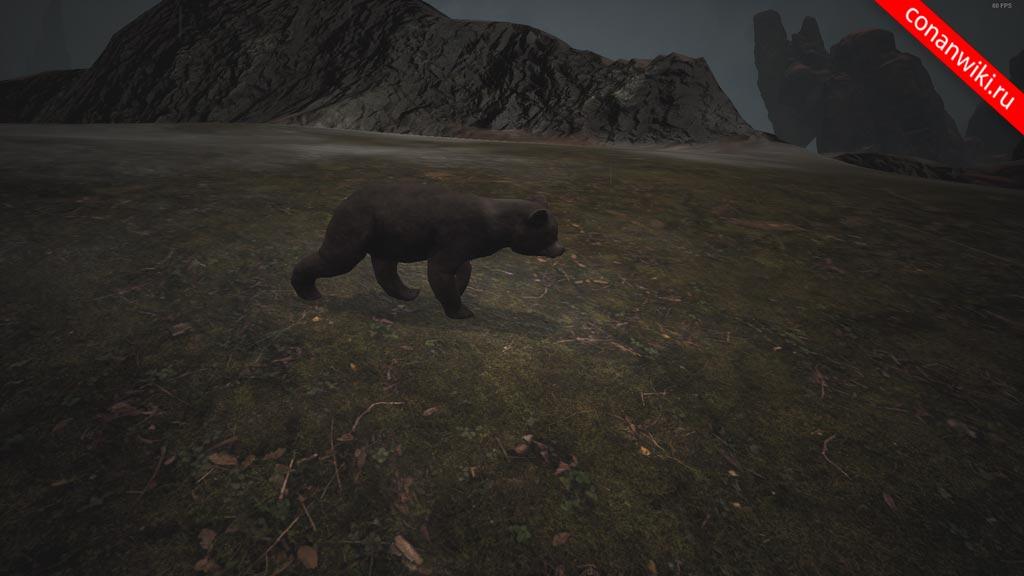 Найти медвежонка